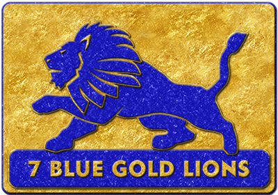 7 Blue Gold Lions SGPS, SA, the entity that heads the RC Group, was formed in 2013.