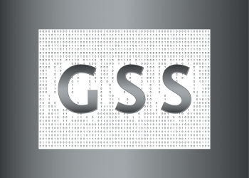 The Portuguese company in the area of security technology by GSS Solutions